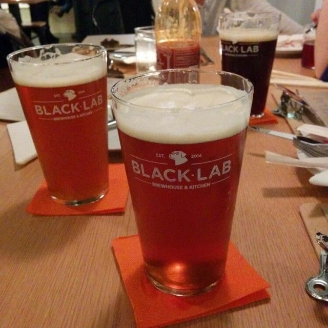 Black Lab Brewhouse & Kitchen in Barcelona, Cataluña - craft brew