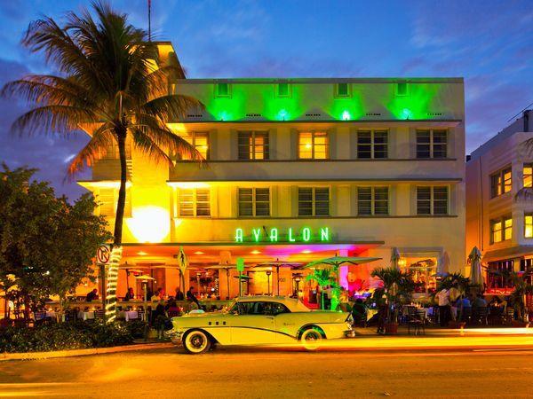 The Avalon Hotel   Miami South Beach