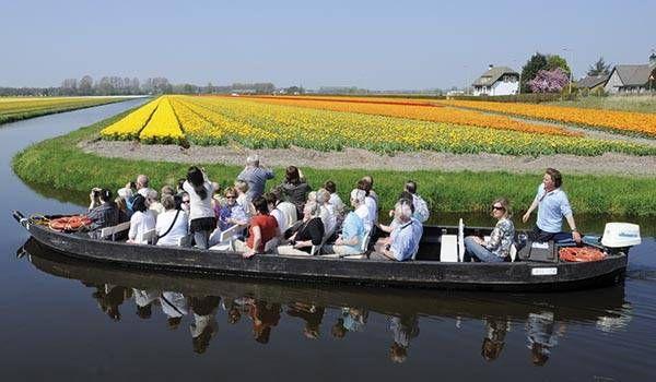 The most beautiful tulip garden, the Keukenhof in Holland.