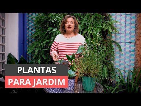 Plantas de jardim: Como escolher o melhor para sua área verde   – PLANTAS/horta