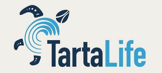 Red Sea Turtle Project: TARTALIFE!