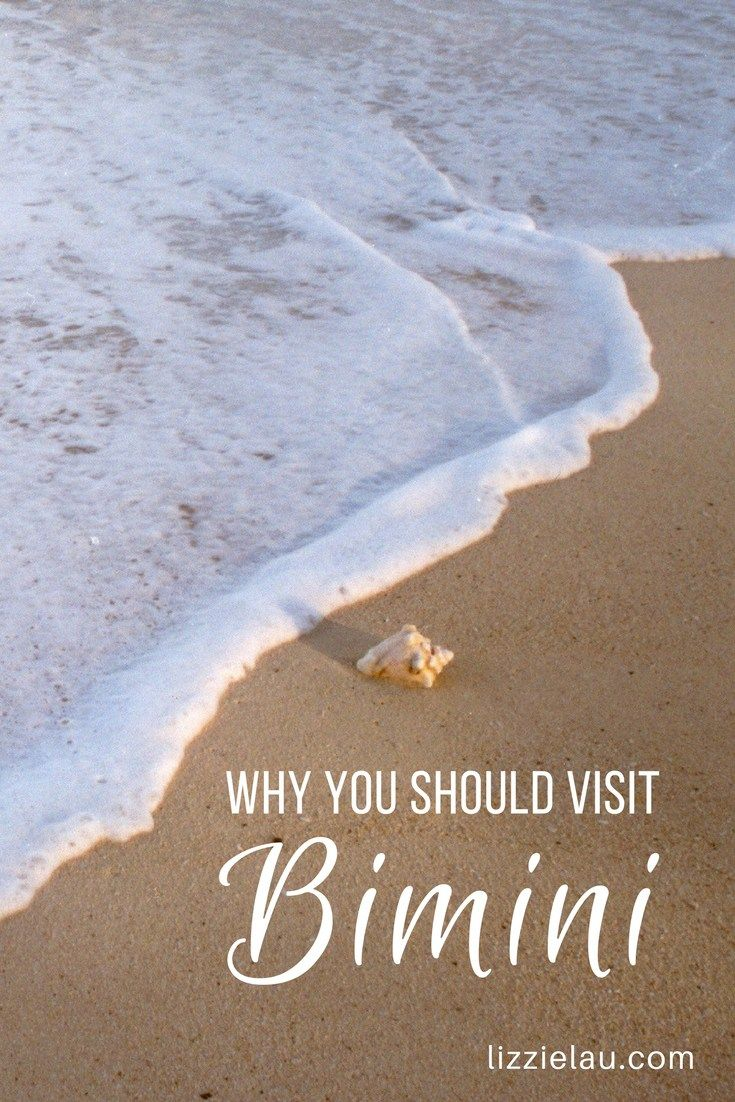 Why you should visit Bimini, The Bahamas #travel #bimini #bahamas #biminibliss