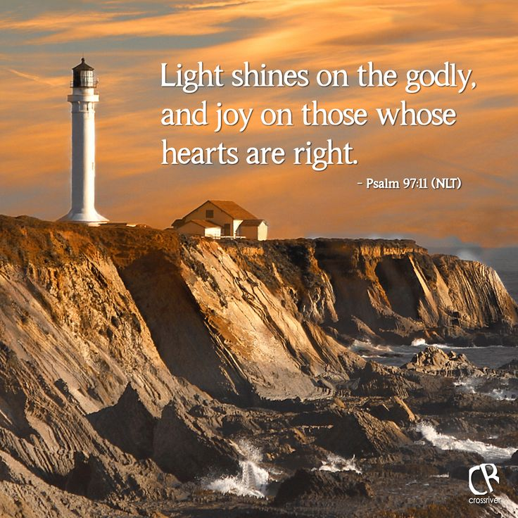 Light shines on the godly, and joy on those whose hearts are right. - Psalm 97:11