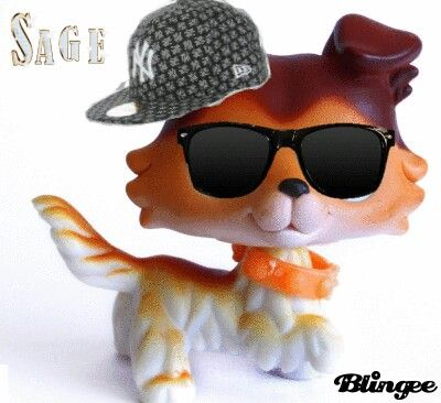 62ee10b1d5e3ddf6a8fc18ea925a0cb5 lps popular popular memes 64 best lps images on pinterest custom lps, littlest pet shops,Lps Memes