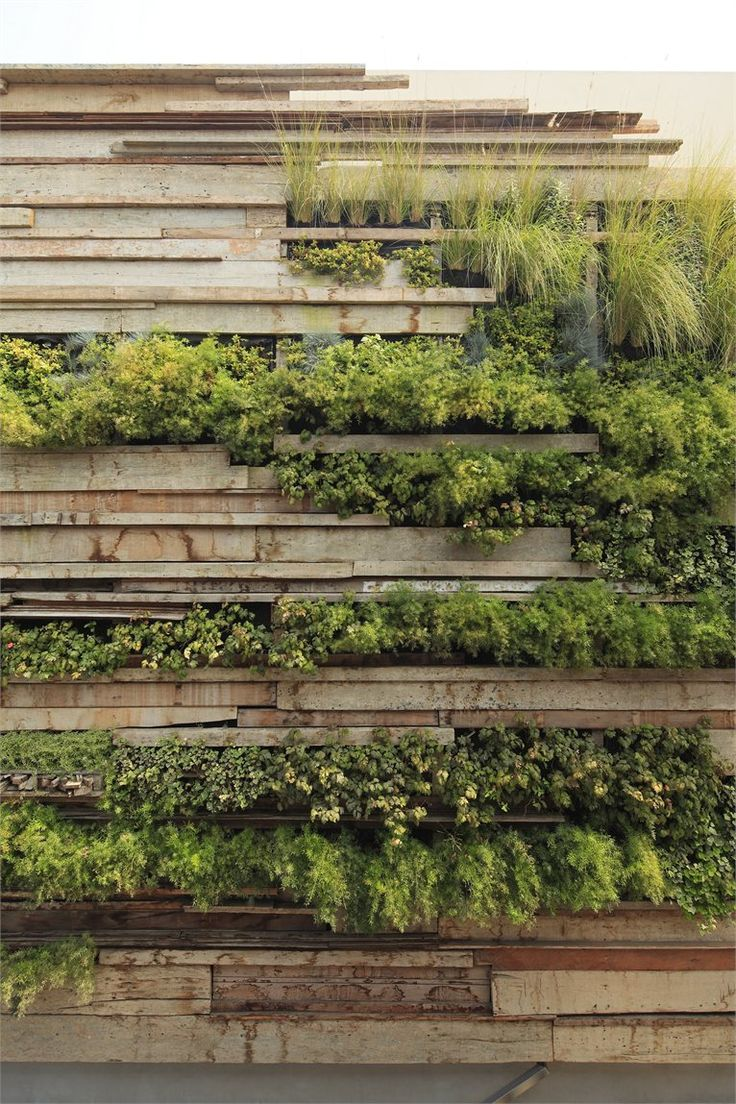 Livewall green wall system make conferences more comfortable - Zentro Office Building And Commercial La Molina District Peru 2012 Gonzalez Moix Arquitectura Nice Way To Soften The Wall