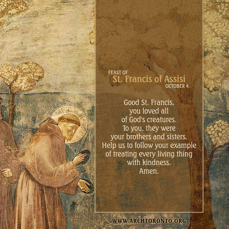 saint francis of assisi essay Saint francis of assisi (1182-10/4/1226) was born into a well-off family unit at assisi, italy, the son of a wealthy merchant named pietro di bernardone francis received little formal education and during his formative years as an adolescent, he was all the rage, attractive, appealing and was mostly.
