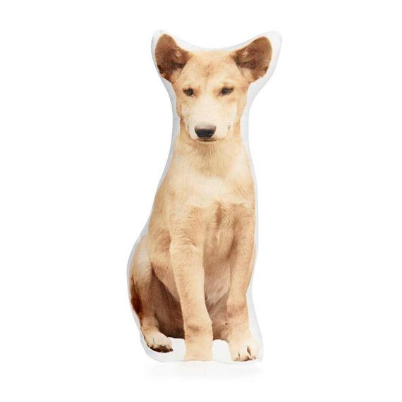 Dingo Australia Australian animals gift for dad pillow