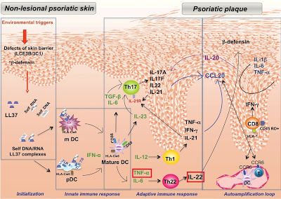 V Psor Psoriasis Cream: What is psoriasis of the skin?