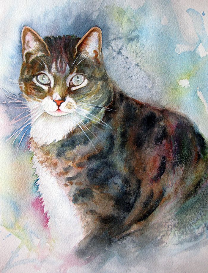 Davids cat 2 by karincharlotte on DeviantArt