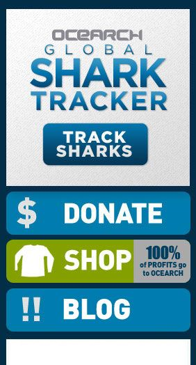 OCEARCH - Shark Tracker  Now I'll have a map to explain why I avoid the ocean.  Yikes.