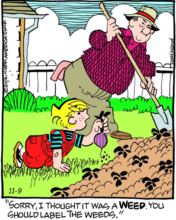 Dennis the Menace for 11/9/2016