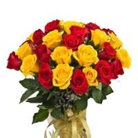 http://www.sofiaraj.com/flowers/20-red-n-yellow-roses