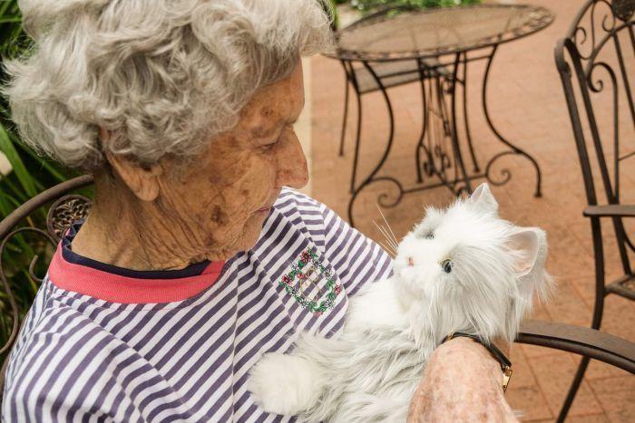 Robotic Puppies And Kittens Trigger Happy Memories In Dementia