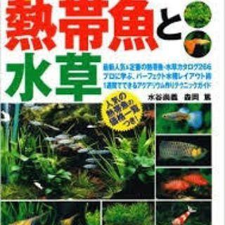 【mitamuramasakazu】さんのInstagramをピンしています。 《幼なじみの森岡篤を紹介します✌  はじめての熱帯魚と水草 人気・定番の熱帯魚・水草カタログ266  憧れのアクアリウム、熱帯魚、水草、写真。飼い方、育て方の解説と、水槽を作る方法まで。  発売元:主婦の友社 森岡篤:写真  #水草 #熱帯魚 #アクアリウム #森岡篤》