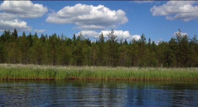 Kesäpäivä Ruunaojalla, Pudasjärvi