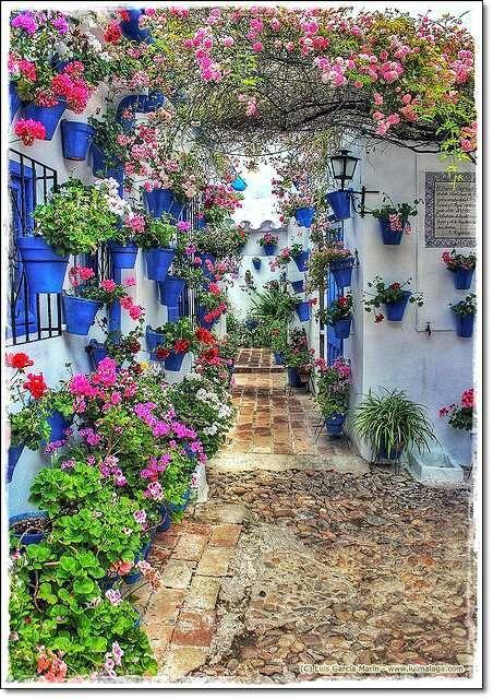 Patio Cordoba. Spain