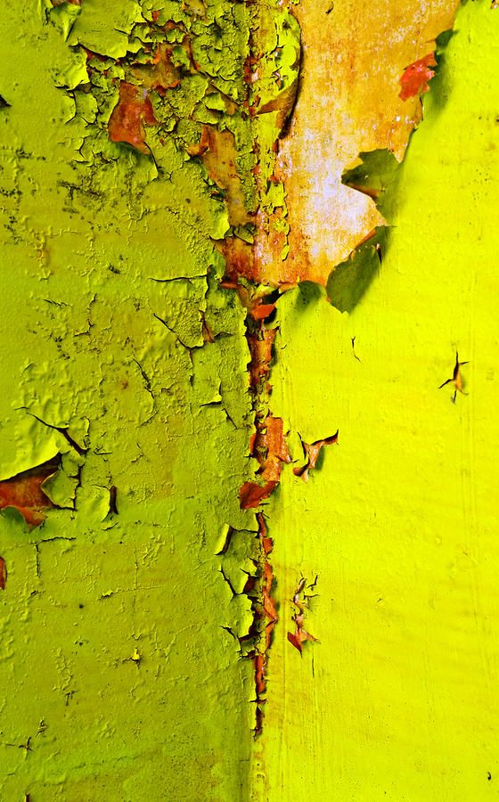 """peeling chartreuse """"going green"""" by Skip Hunt [Please keep photo credit and original link if reusing or re-pinning. Thanks!]"""