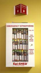 EpiSHED - School Nurses Office Epinephrine Cabinet.  Available to hold 16 or 32 Epi-Pens.  Great idea!