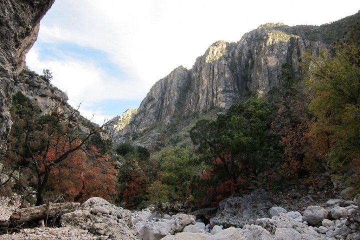 Guadalupe Mountains National Park, Národné parky v USA