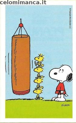 Peanuts Snoopy e i suoi amici: Fronte Figurina n. 43 -