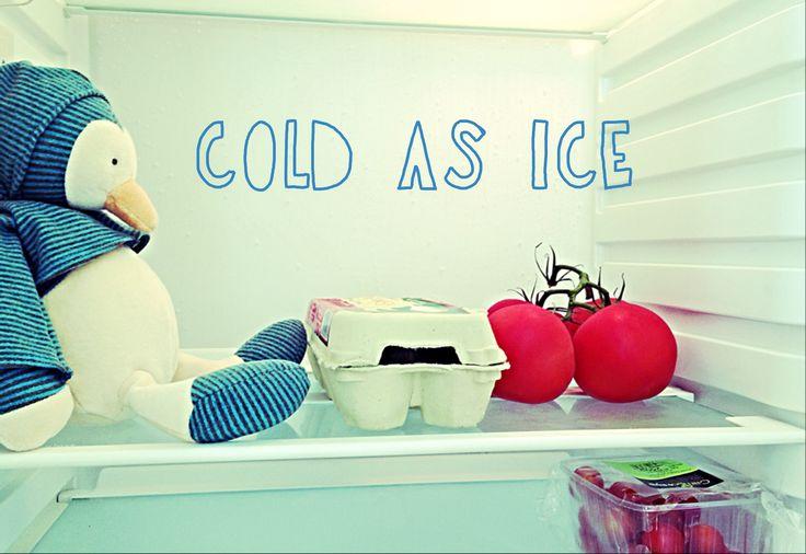 Pinguine at the fridge.