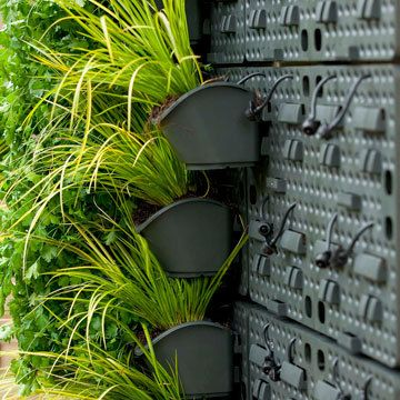 Holman GreenWall Vertical Planting Kit