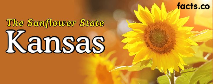 Kansas facts - interesting fun facts about Kansas for kids