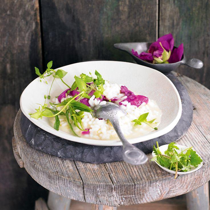 Klassiskt recept på krämig risotto. Piffa upp risotton med nyponrosblommor och vilda örter.