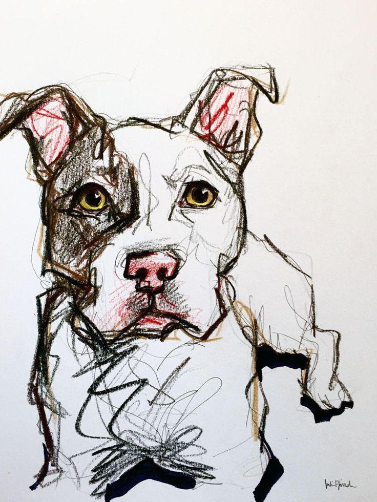 Pit bull pet portrait sketch                                                                                                                                                                                 More