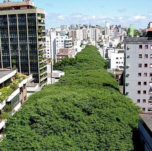 As ruas mais bonitas do Brasil - POA