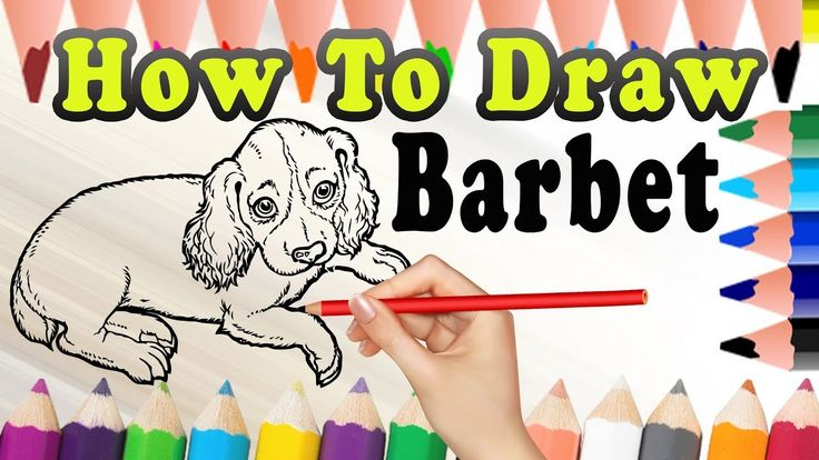 How To Draw A Dog Barbet | Easy dog drawing Tutorial | Draw Easy For Kids