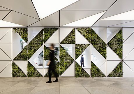 Cool design #design #greenwall: