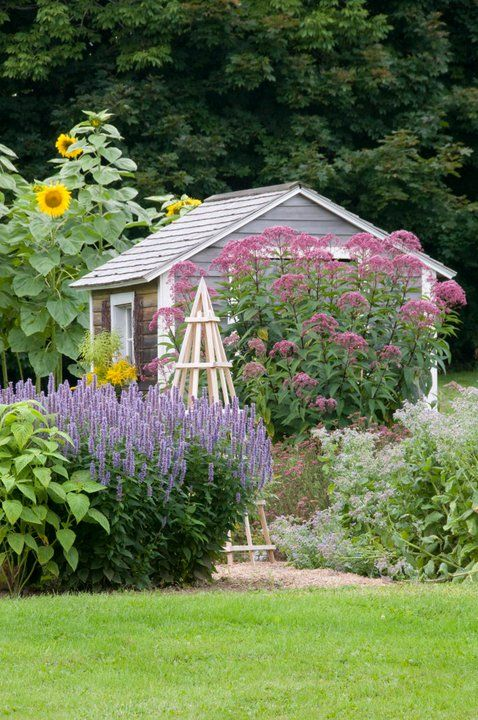 Such a pretty little cottage shed with what looks like lots of perennial flowers... Except maybe the sunflowers! Gotta love perennials!