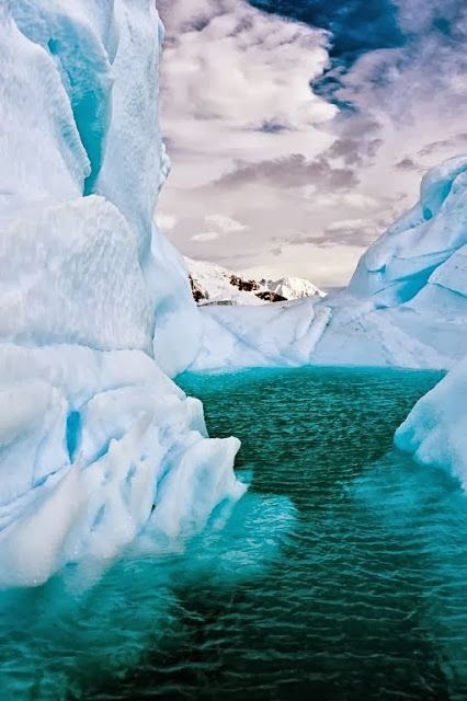 Iceberg Lagoon, Antarctica - Explore the World with Travel Nerd Nici, one Country at a Time. http://travelnerdnici.com