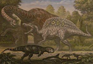 Dinosaurier bilder (584 Fotos) Hintergrundbilder