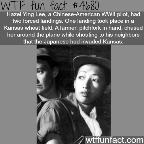 Hazel Ying Lee - WTF fun facts