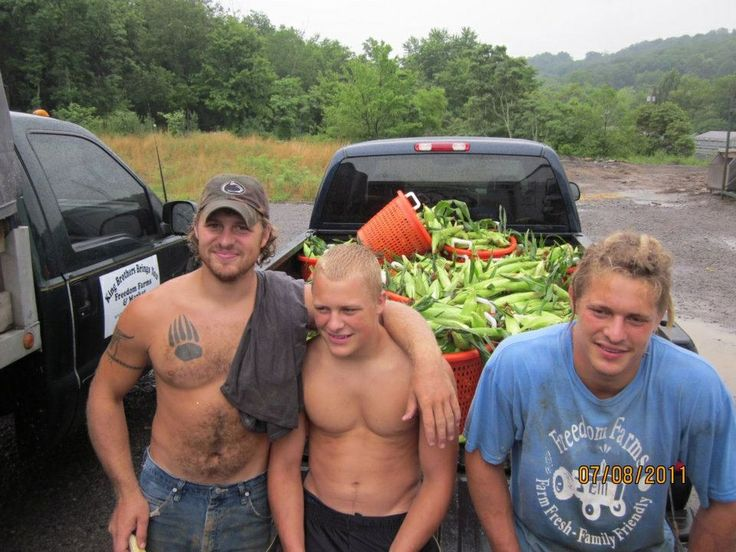 Tim, Sam and Pete King from Farm Kings. Located in PA. Can be seen on GAC