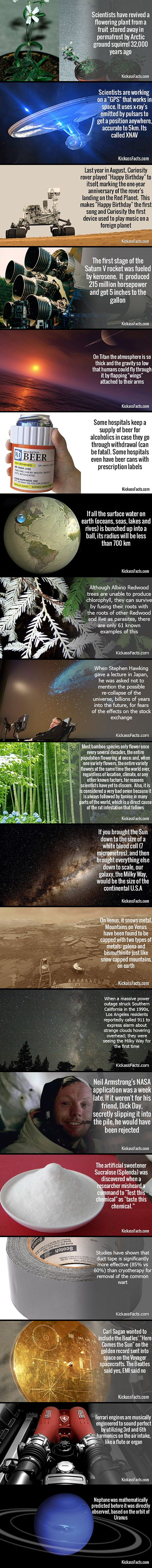 Reviving a frozen flower and 18 other interesting science facts.