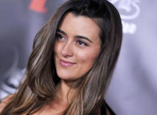 NCIS Alum Cote de Pablo to Star in CBS' The Dovekeepers Miniseries