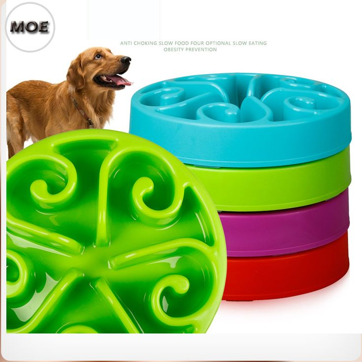 Anti Choking Slow Eating Obesity Prevention Container For Food Big Normal Dog Bowl #Affiliate