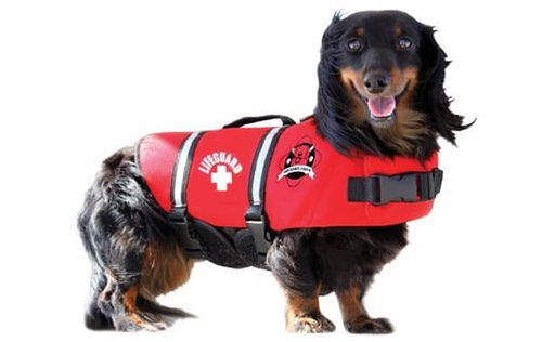 Lifeguard - Fido Dog Life Jacket - Dog Life Jackets - Dog life jackets for dogs of all sizes.