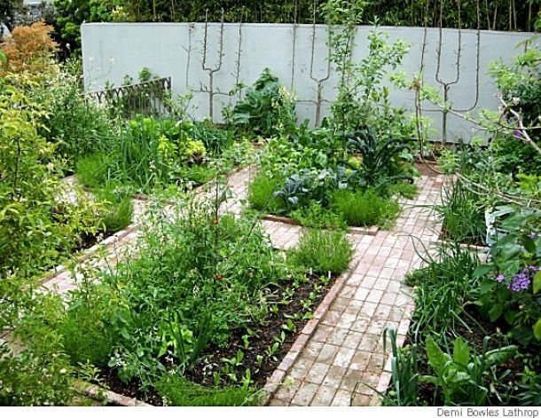 791 best Garden Potager Parterres Formal images on Pinterest