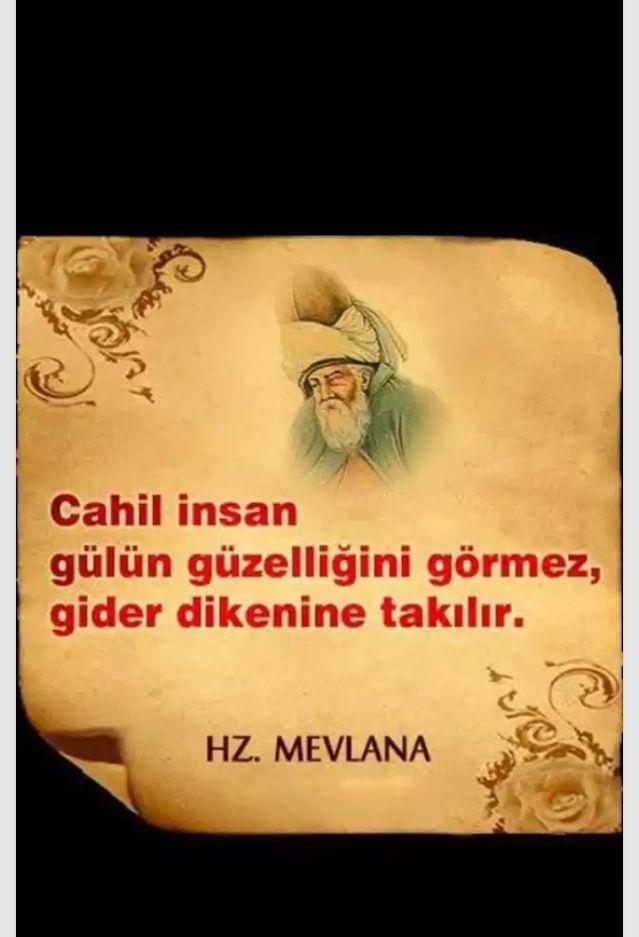 sufi sözler,mevlana, özlü sözler,hikmet,tasavvuf,din