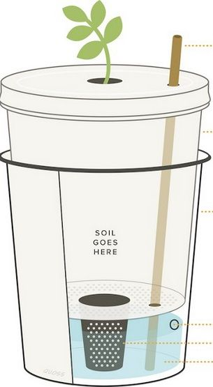 Diy Self Watering Planter How To Plants Pinterest Planters Gardens And Urban Gardening