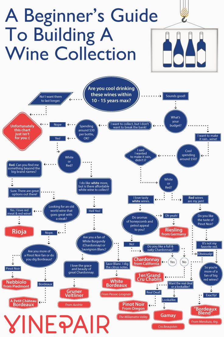 how to start building a wine collection chart
