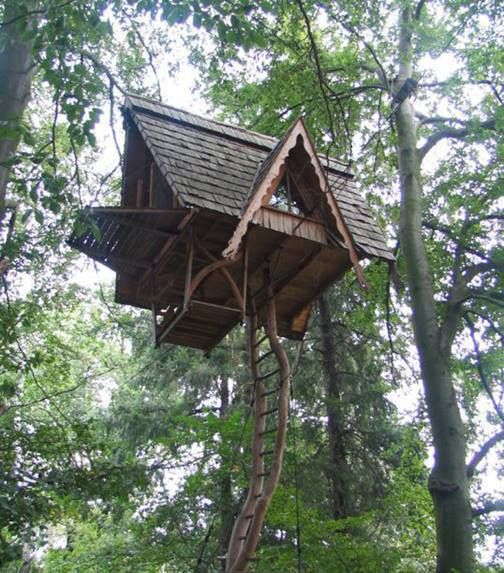 Careful Space Planning Tropical House Garage View: 91 Best Images About Houses: Tree Houses On Pinterest