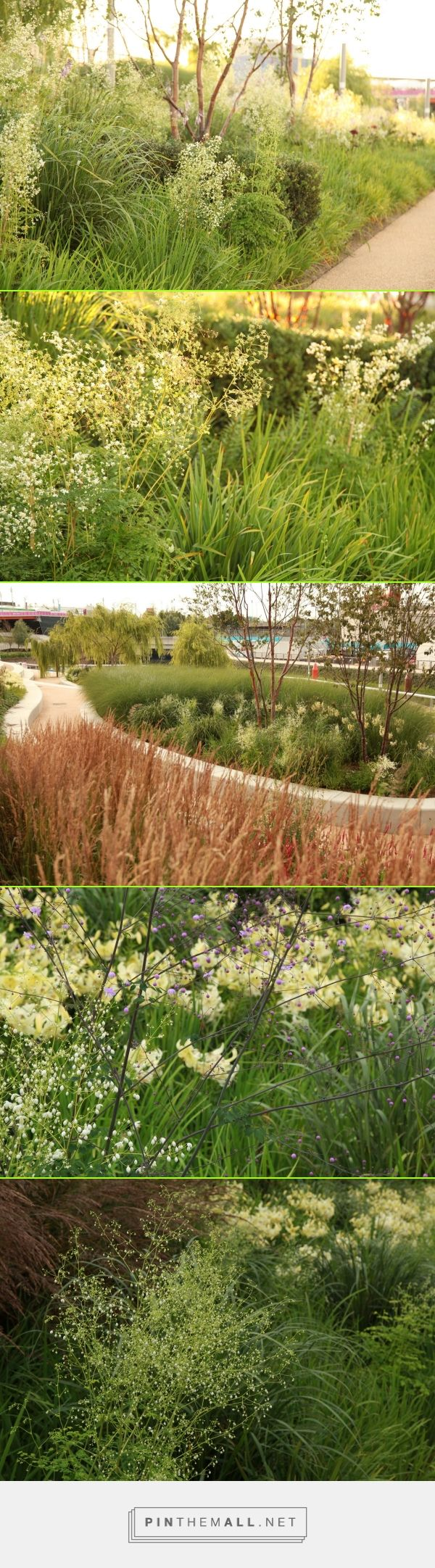 Sarah Price Landscapes   » Olympic Gardens Asia  http://sarahpricelandscapes.com/?page_id=54 - created via https://pinthemall.net