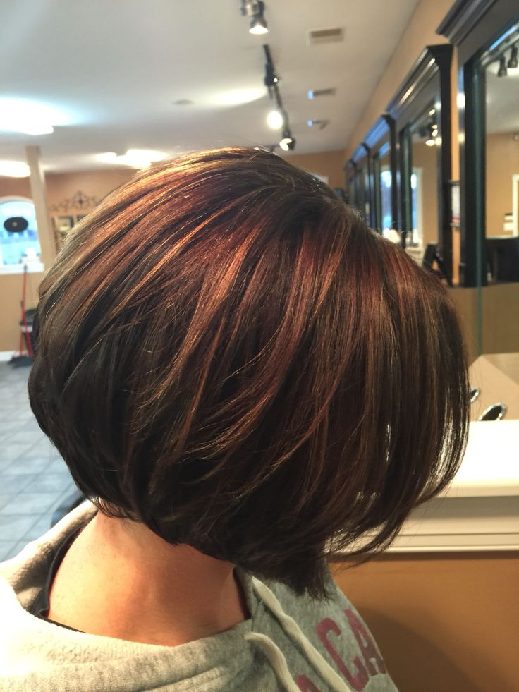 in style hair cut inverted bob chocolate brown with caramel highlights 6779 | 62f67102ab3b947d830706604f1f12b6 brown bob haircut back of bob haircut