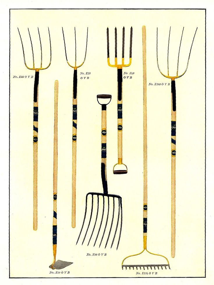 Yard Tools Clip Art : Best images about gardening tools on pinterest