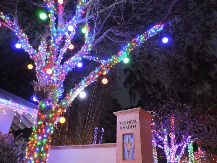 Largo Botanical Gardens Christmas Lights 2020 This year marks the 19th annual Holiday Lights in the Garden at